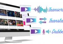 VidScripto Multitask Video Creator